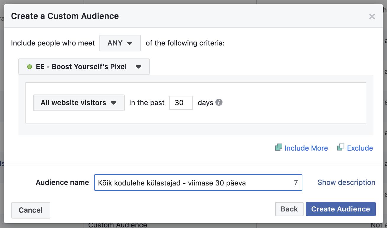 Facebook Pixel ja publikud